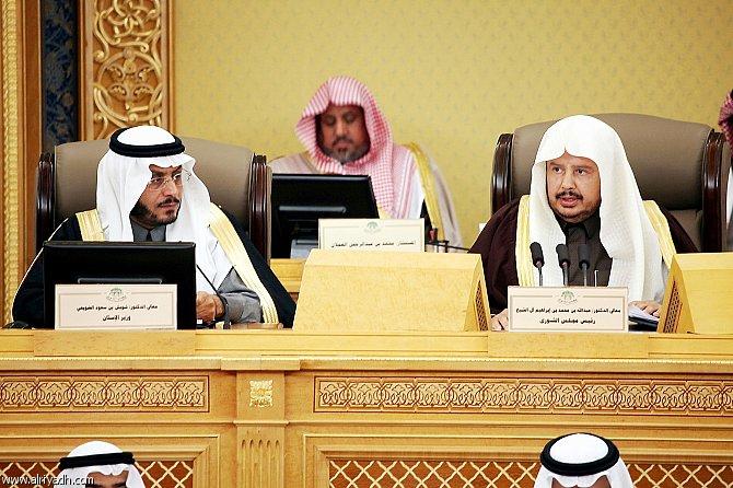 وزير الإسكان بمجلس الشورى الأراضي البيضاء