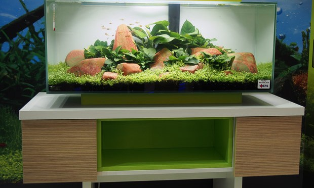 New 72L Fluval Edge Debuts at Interzoo 2014
