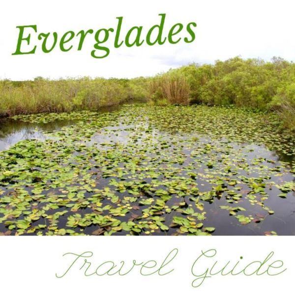 Everglades Travel Guide