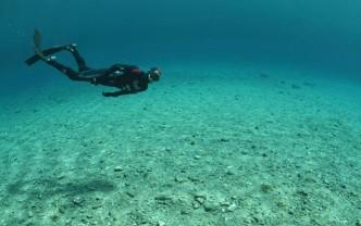 PADI Distinctive Freediver / Advanced Freediver