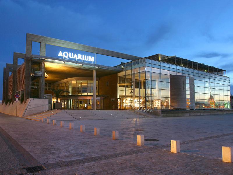 aquarium-la-rochelle(c)aquarium-larochelle