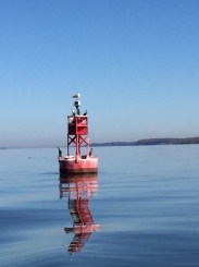 Along the Chesapeake Bay