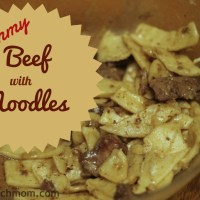 Beef Recipe #2 ~ Beef with Noodles