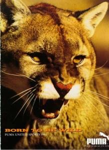 puma-cat-1991001