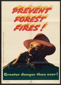 Forest Fire Prevention poster, 1944 Found in Ad Council Historical File, 1941-1997, RS 13/2/207, File 124