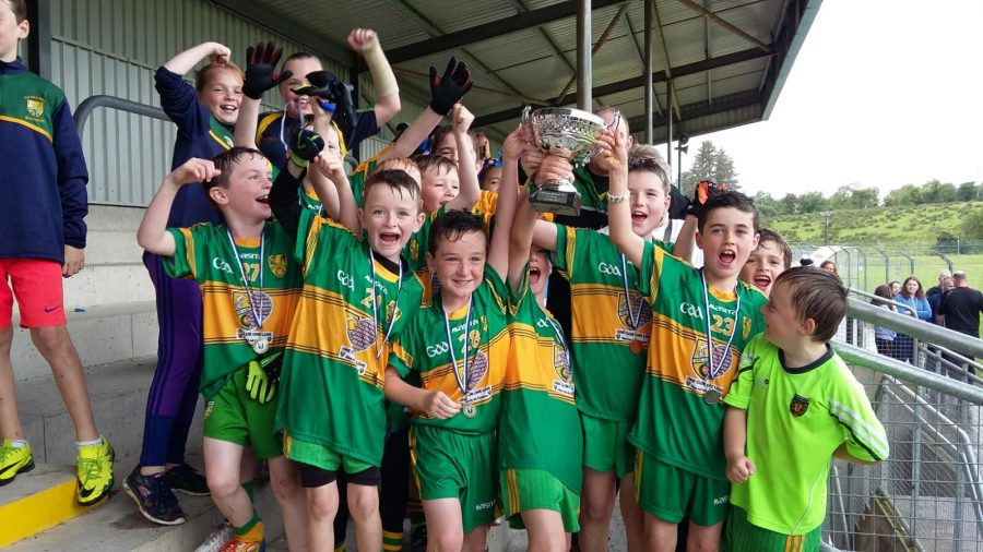 Ardara U9's win Liam Brown Cup