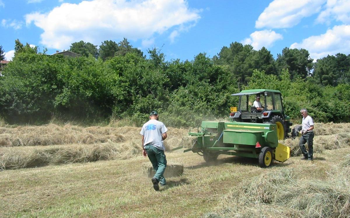 La majorité départementale renforce son soutien en faveur du monde agricole