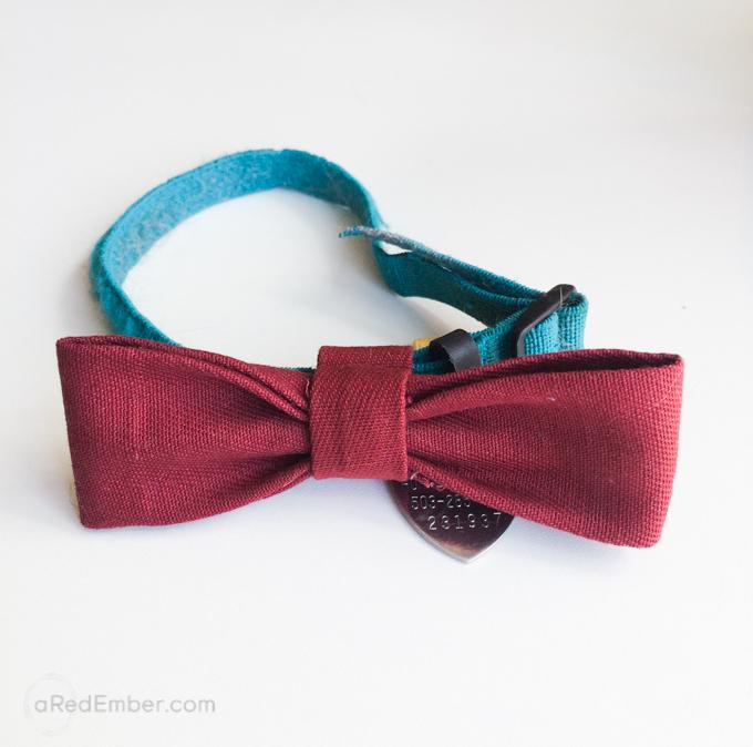animal bow tie
