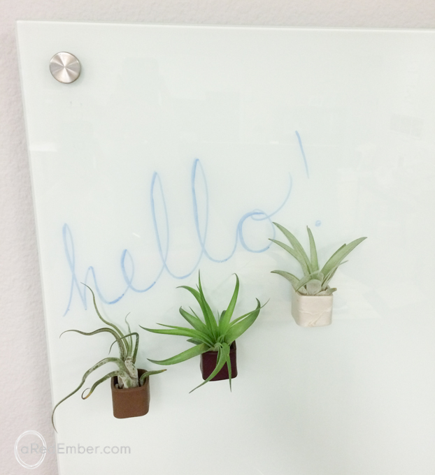 plants for magnet boards