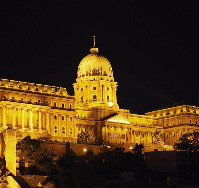 Budavri Palota Buda Castle at night When in Budapest alwayshellip