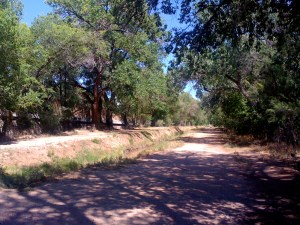 Trail beside Montano Boulevard