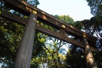 赤穂大石神社(兵庫)付近のおすすめ駐車場は?初詣の混雑状況は?