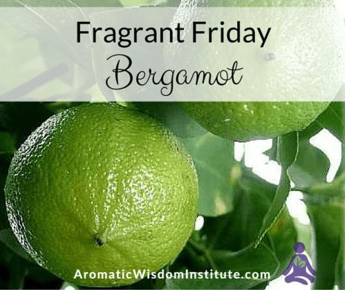 FF-Bergamot-Graphic