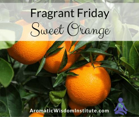FF-Orange-Graphic (1)