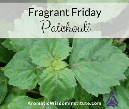 FF-Patchouli-Graphic