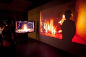 Александр Лещев, Trapped, 2013 // Выставка «Вместо глаз – увеличительные стекла», 21 декабря 2013