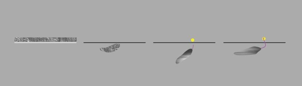 Схема действия ловушки пустоши. Желтым выделено человеческое существо // Фрагмент выпуска №5