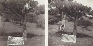"""Акция """"Папуасы"""", 1983"""