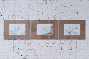 """Графика художника Валерия Максимова на выставке """"Невменяемость дружбы"""", лаборатория современного искусства """"Турнички"""", 2015"""