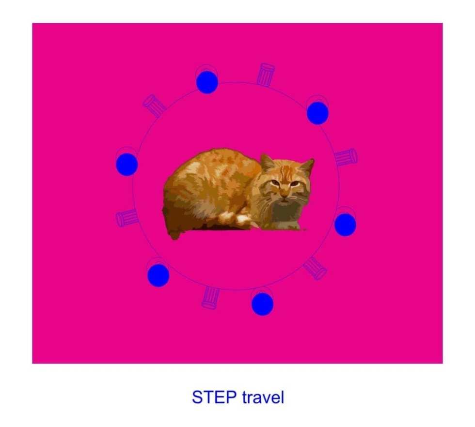 Step travel grant