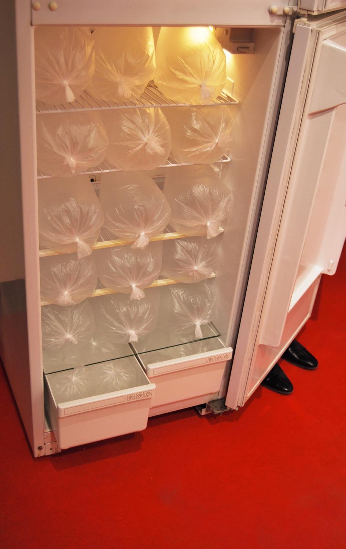 Андрей Ишонин, «Я заполнил холодильник своим дыханием», 2020. Фото Елена Ямлиханова.