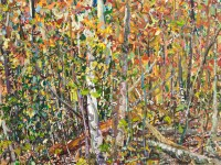 11cumulative_nature-_hambidge_autumn_diptych-copy