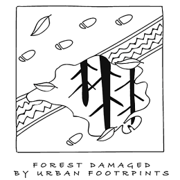 Forest damaged by urban footprints