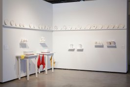 10'x24'x3', porcelain with towels dishpans, sponges, dish gloves and soapy water, 2010