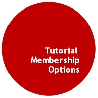 WordPress for Artists Tutorial Membership Options