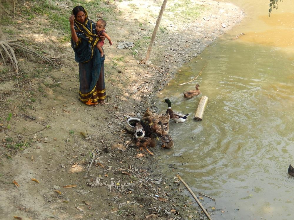 Manjura & Her Ducks