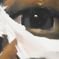 The eyes have it in the work of Santiago Ydanez