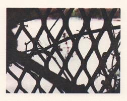 Graveyard & Fence Detail III_3.5