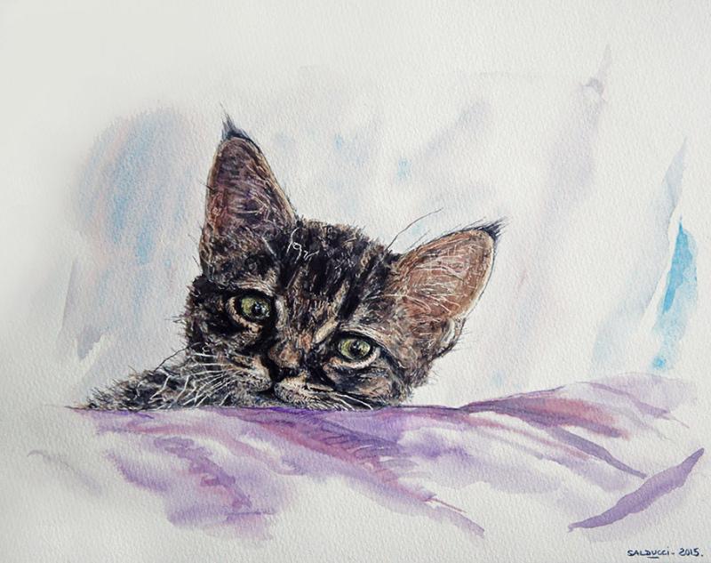 aquarelle portrait chat artiste peintre patrick salducci. Black Bedroom Furniture Sets. Home Design Ideas