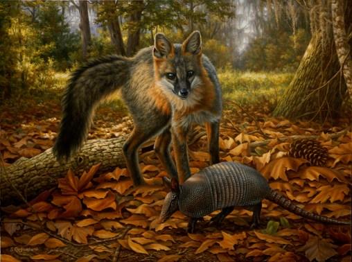 wild_life_20120303_1381824095