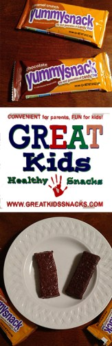 YummySnack #Candy Bars from #GreatKidsHealthySnacks Subscription Box #glutenfree