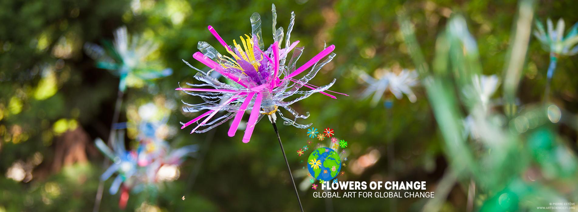 Exposition Flowers of Change de Pierre Estève