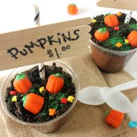 DIY Pumpkin Patch Pudding Cups for Fall and Halloween