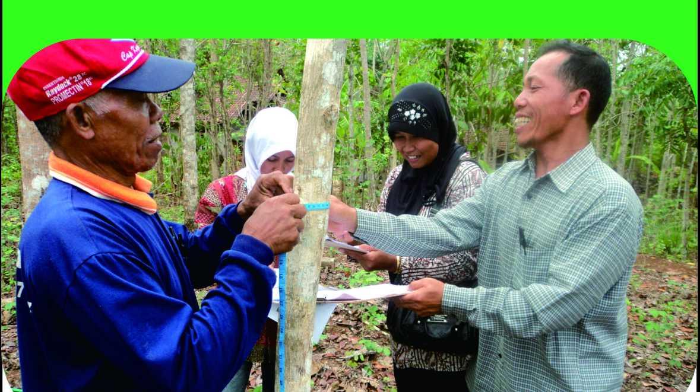 Panduan Praktis Menghitung Cadangan Karbon Hutan Rakyat