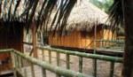 Siona huts