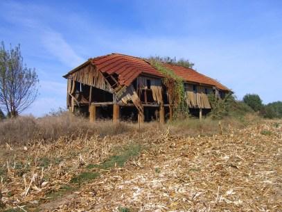 Com. Avieiras - Habitação palafítica