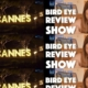 NEW! Asian Culture Vulture Bird Eye Review Show – channel announcement