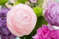 AsiekArt-pink-flowers-2