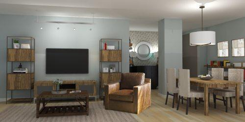 Medium Of Transitional Living Room