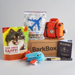 Small Of Barkbox For Cats