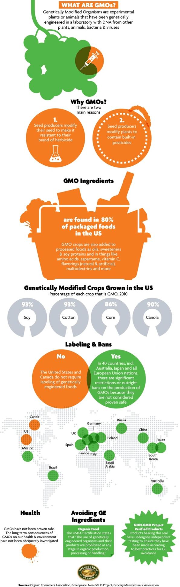 definition gmo foods  foodstutorialorg