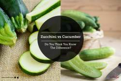 Mutable Zucchini Vs Cucumber Do You Think You Know By Atraybhatt Lybrate Zucchini Vs Cucumber Do You Think You Know By Dr Zucchini Vs Cucumber Pickles Zucchini Vs Cucumber Seedling