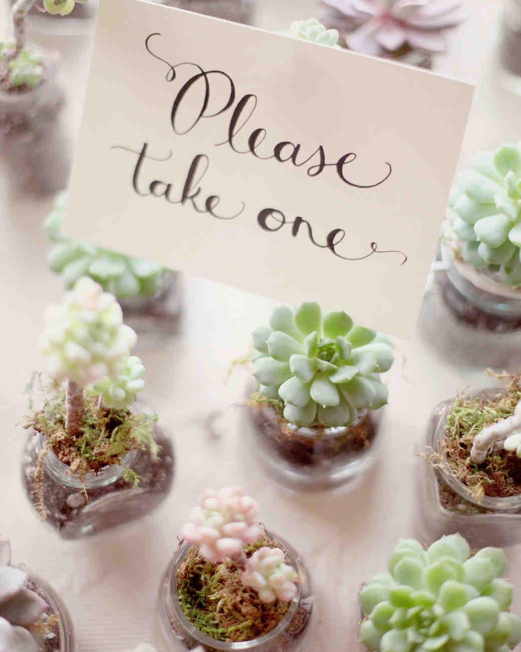 succulent wedding ideas succulent wedding favors 27 Ideas for Using Succulents at Your Wedding Martha Stewart Weddings
