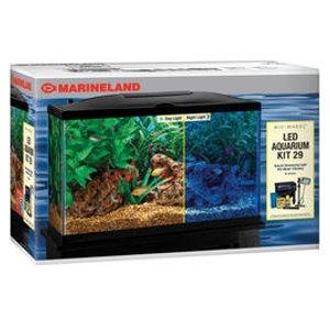 Kee's Aquarium & Pets   Marineland Perfecto 10 Gallon LED Kit   Shelby