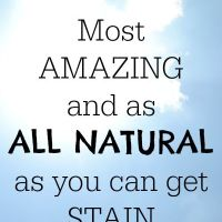 ALL NATURAL Stain Remover