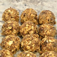 No Bake Oatmeal Energy Bite the Kids Love